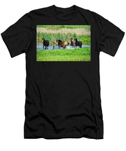Wild Horses 6 Men's T-Shirt (Athletic Fit)