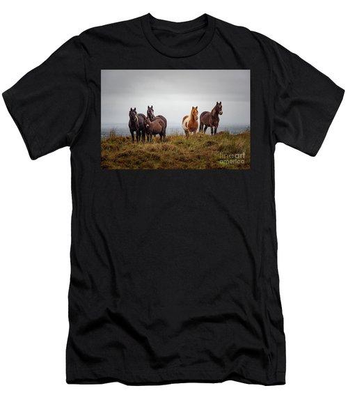 Wild Horses In Ireland Men's T-Shirt (Athletic Fit)