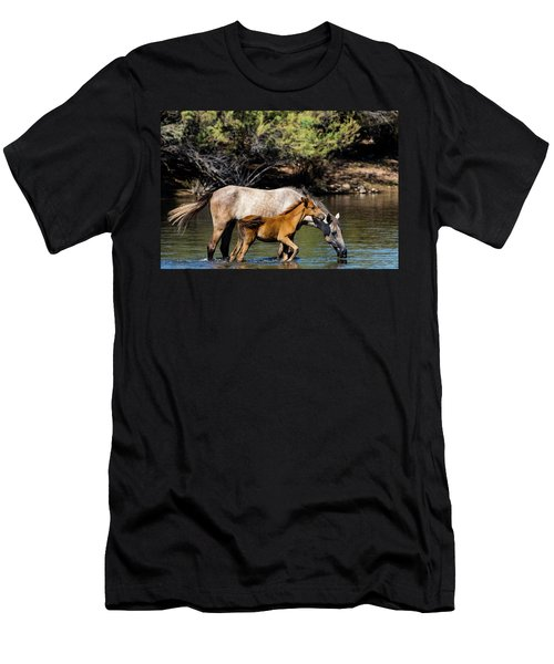 Wild Horses On The Salt River Men's T-Shirt (Athletic Fit)