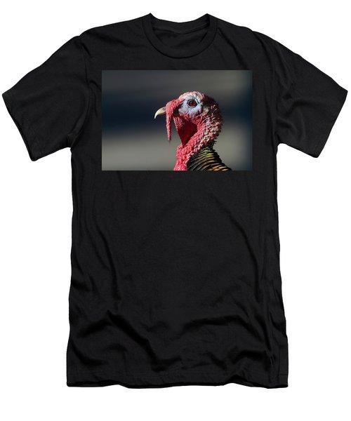 Wild Merriams Turkey Portrait  Men's T-Shirt (Athletic Fit)