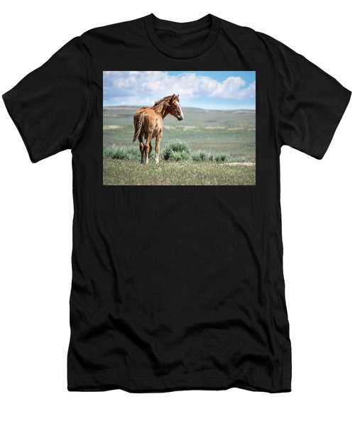 Wild Mustang Colt Of Sand Wash Basin Men's T-Shirt (Athletic Fit)