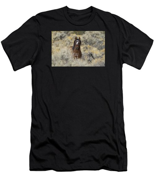 Wild Mustang Stallion Men's T-Shirt (Athletic Fit)
