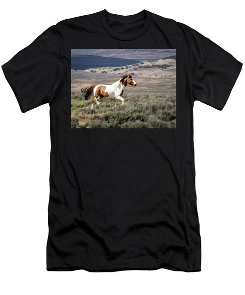 Wild Mustang Stallion On The Move In Sand Wash Basin Men's T-Shirt (Athletic Fit)