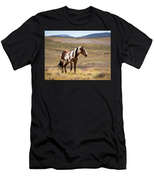 Wild Mustang Stallion Picasso Of Sand Wash Basin Men's T-Shirt (Athletic Fit)