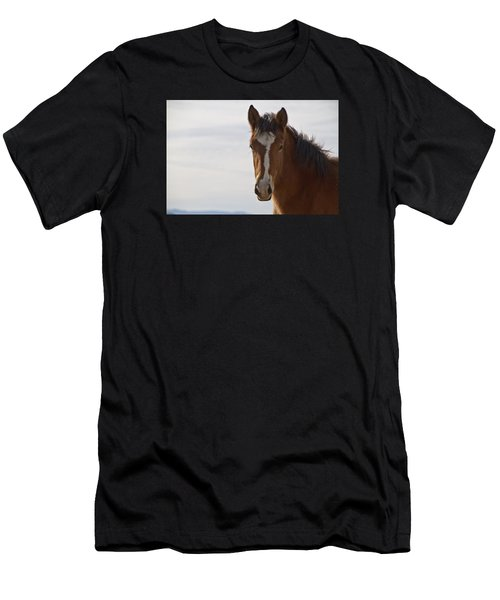 Wild Mustang Yearling Men's T-Shirt (Athletic Fit)