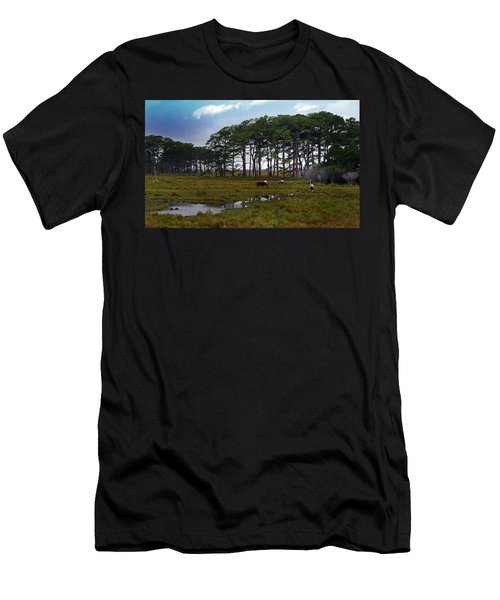Wild Ponies Of Assateague Men's T-Shirt (Slim Fit) by Lori Tambakis