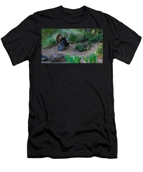 Wild Turkey Men's T-Shirt (Slim Fit) by Mark Barclay