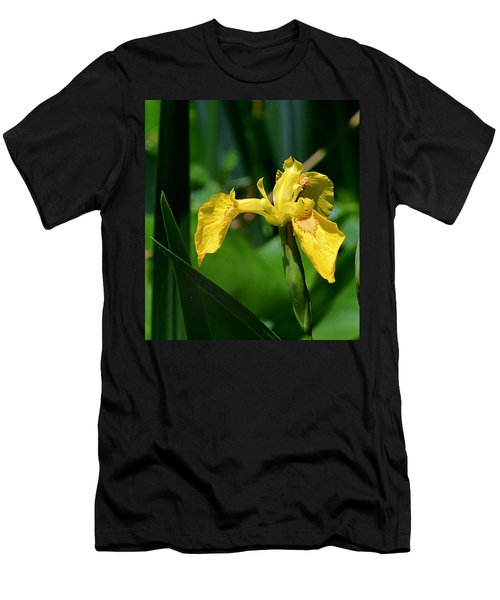 Wild Yellow Iris Men's T-Shirt (Athletic Fit)