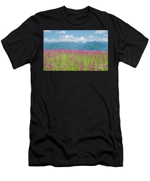 Wildflower Meadows And The Carpathian Mountains, Romania Men's T-Shirt (Athletic Fit)