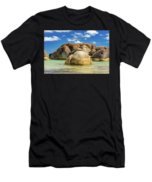William Bay Men's T-Shirt (Athletic Fit)