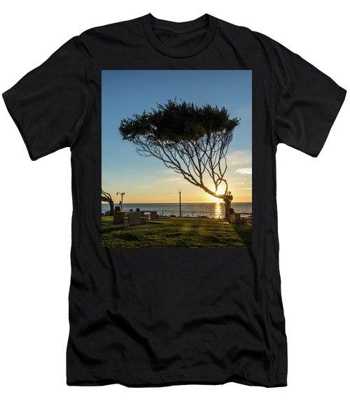 Wind Blown Tree Men's T-Shirt (Athletic Fit)