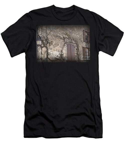 Windows Among The Vines Men's T-Shirt (Slim Fit)