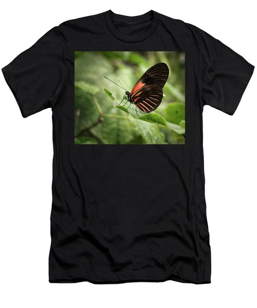 Wings Of The Tropics Butterfly Men's T-Shirt (Athletic Fit)