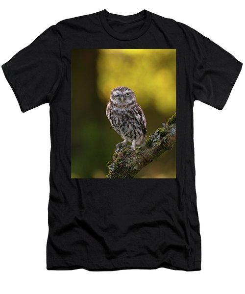 Winking Little Owl Men's T-Shirt (Athletic Fit)