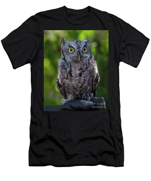 Winston Wildlife Art By Kaylyn Franks Men's T-Shirt (Athletic Fit)