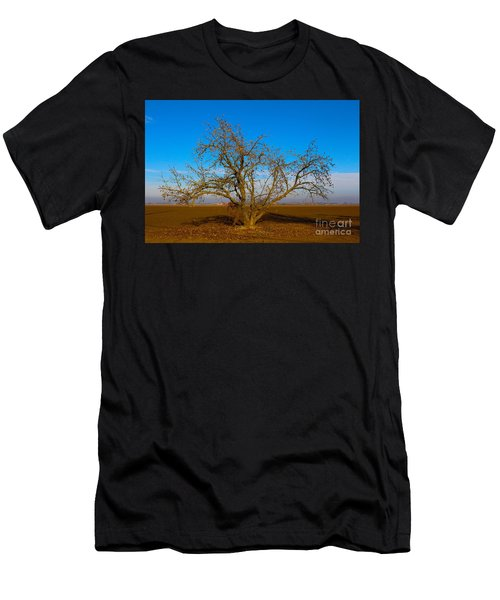 Winter Apple Tree Men's T-Shirt (Athletic Fit)