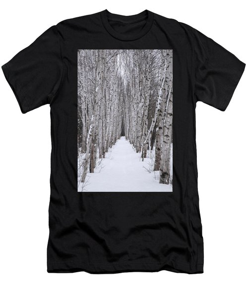Winter Birch Path Men's T-Shirt (Athletic Fit)