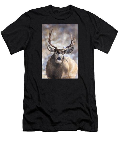Winter Buck II Men's T-Shirt (Athletic Fit)