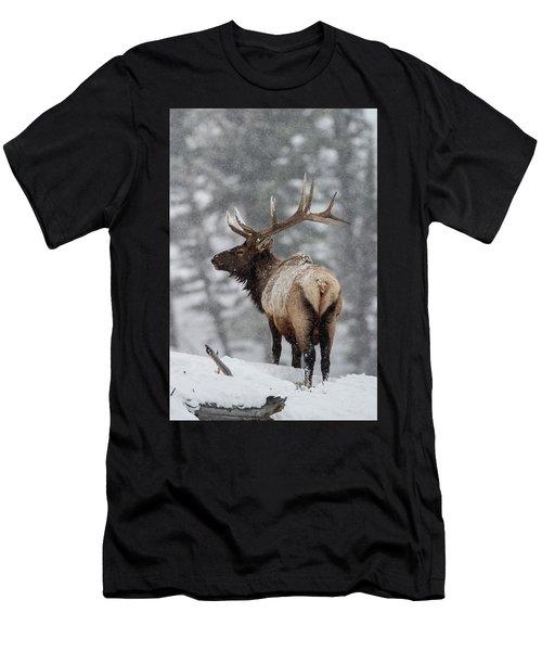 Winter Bull Elk Men's T-Shirt (Athletic Fit)