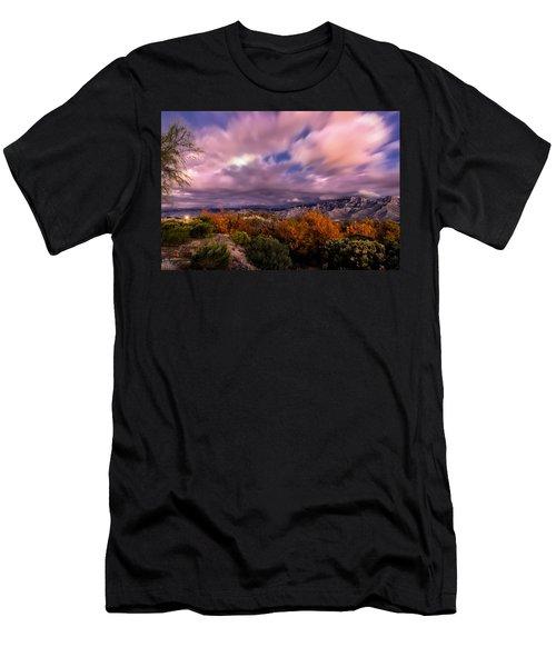 Winter Colors 25 Men's T-Shirt (Athletic Fit)