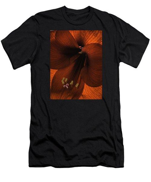 Winter Sunshine Men's T-Shirt (Athletic Fit)