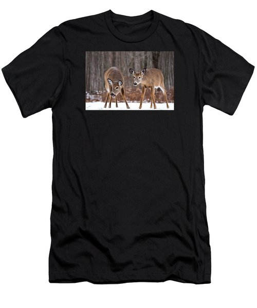Winter White Tail Deer Men's T-Shirt (Athletic Fit)