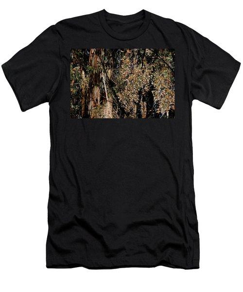 Wintering Monarchs Men's T-Shirt (Athletic Fit)