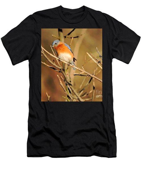 Winter's Bluebird  Men's T-Shirt (Athletic Fit)
