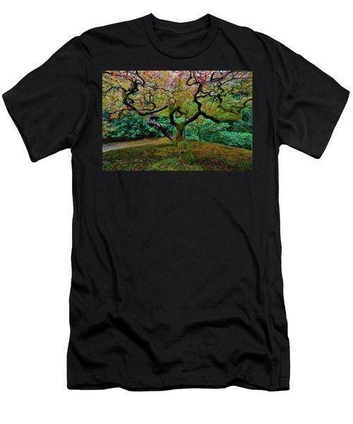 Wisdom Tree Men's T-Shirt (Slim Fit) by Jonathan Davison