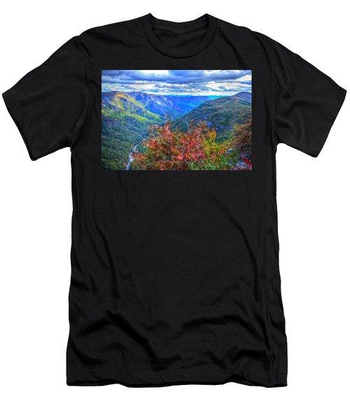 Wiseman's View Men's T-Shirt (Athletic Fit)