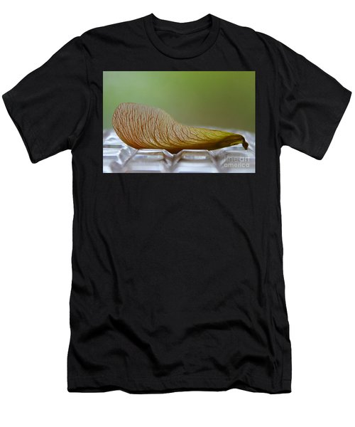 Within Lies A Tree Men's T-Shirt (Athletic Fit)