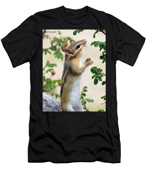 Within Reach - Chipmunk Men's T-Shirt (Athletic Fit)