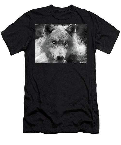 Wolf 1 Men's T-Shirt (Athletic Fit)