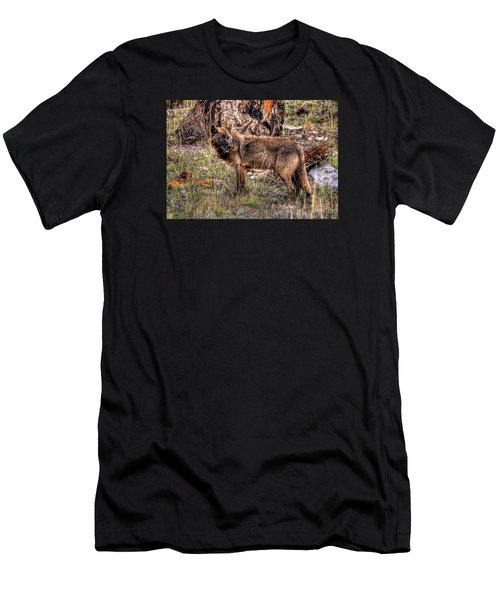 Wolf Looking Back Men's T-Shirt (Athletic Fit)