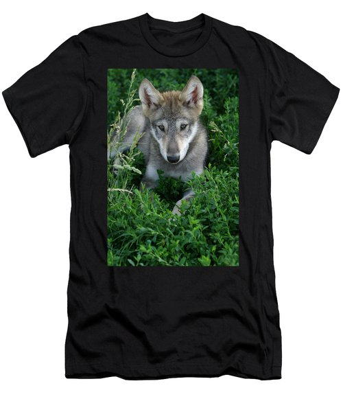 Men's T-Shirt (Slim Fit) featuring the photograph Wolf Pup Portrait by Shari Jardina