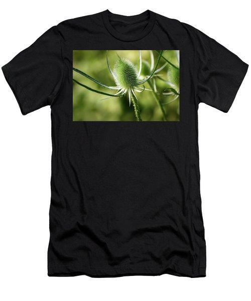 Wonderful Teasel - Men's T-Shirt (Athletic Fit)