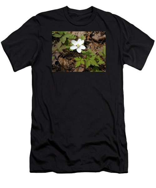 Men's T-Shirt (Slim Fit) featuring the photograph Wood Anemone by Linda Geiger