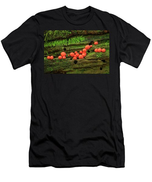 Wood Fungus Men's T-Shirt (Athletic Fit)