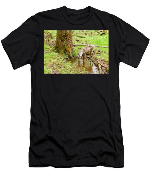 Woodland Caribou Men's T-Shirt (Athletic Fit)