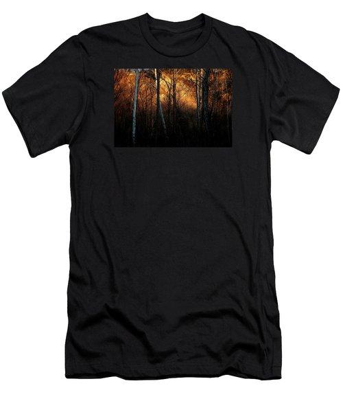 Woodland Illuminated Men's T-Shirt (Athletic Fit)