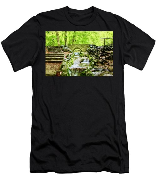Woodland Steps And Stream Men's T-Shirt (Athletic Fit)