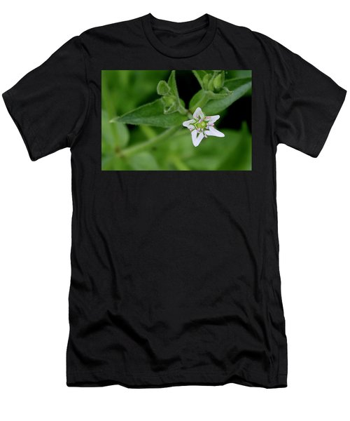 Woodland Wildflower Men's T-Shirt (Athletic Fit)