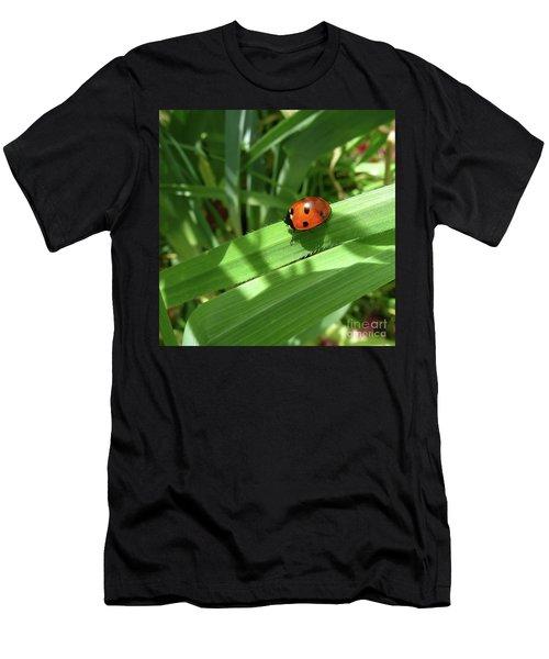 World Of Ladybug 1 Men's T-Shirt (Athletic Fit)