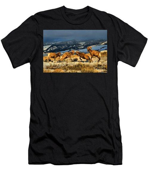 Wyoming Bighorn Brawl Men's T-Shirt (Athletic Fit)