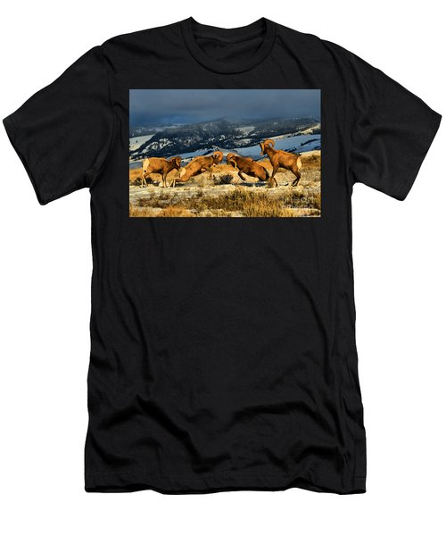 Wyoming Bighorn Brawl Men's T-Shirt (Athletic Fit)