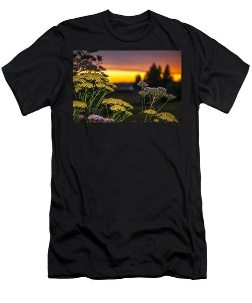 Yarrow At Sunset Men's T-Shirt (Athletic Fit)