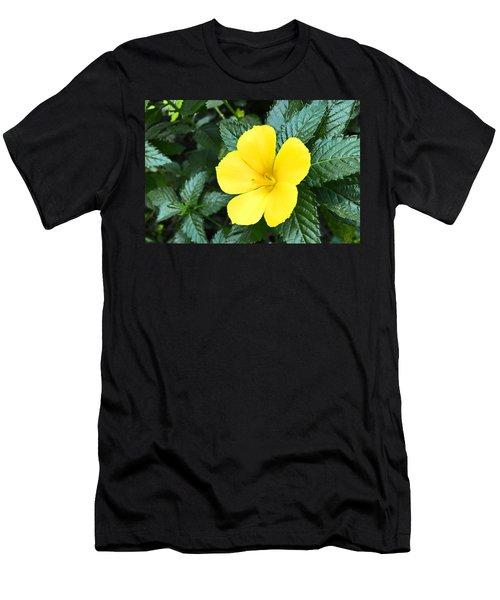 Yellow Alder Flower Men's T-Shirt (Athletic Fit)