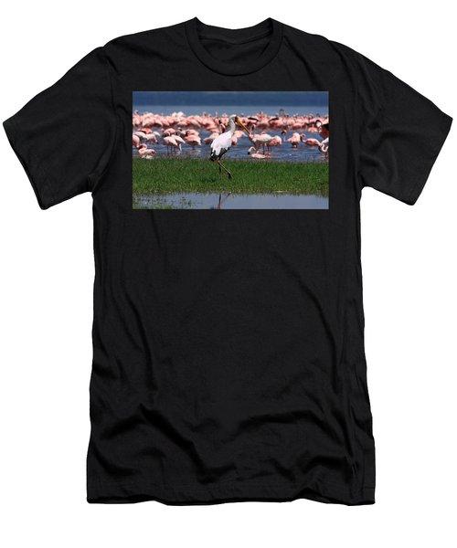 Yellow Billed Stork Men's T-Shirt (Athletic Fit)