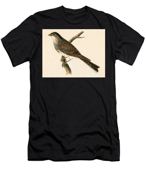 Yellow Browed Bunting Men's T-Shirt (Athletic Fit)