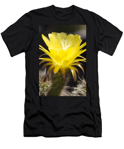 Yellow Cactus Flower Men's T-Shirt (Athletic Fit)
